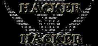 Aksi Hacker Untuk Pembebasan Heker Jember