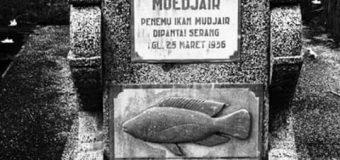 Sejarah Ikan Mujair